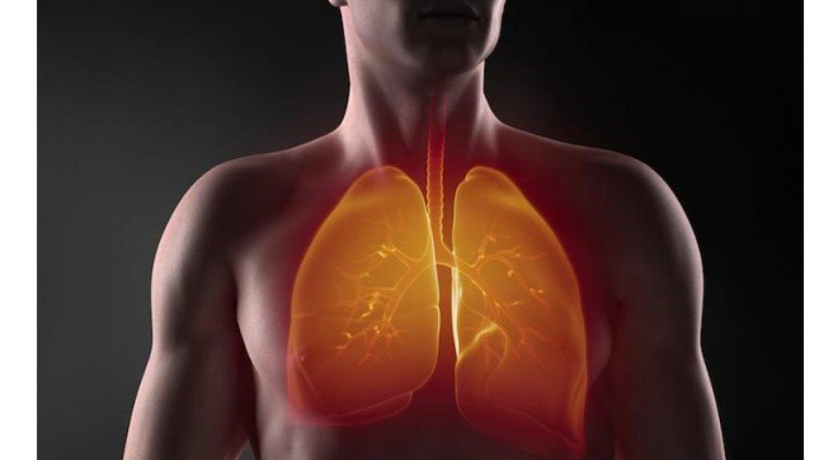 Zbadaj swoje płuca!